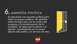 Amnistía política